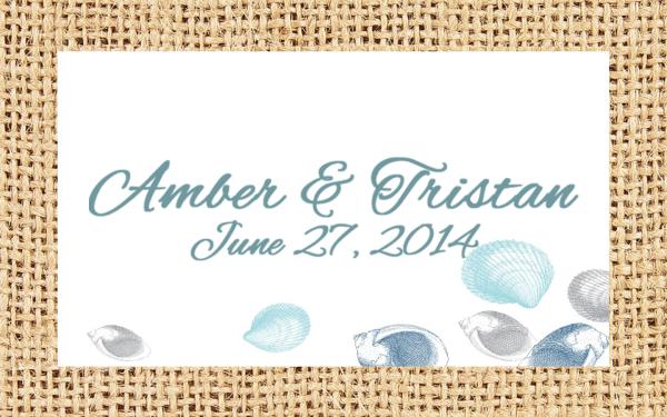 Amber & Tristan's Crowne Plaza Ventura Beach Wedding